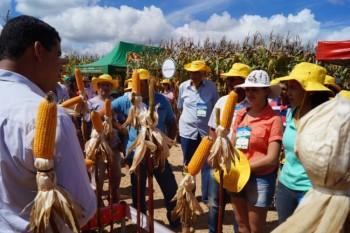 13º Encontro Tecnológico do Milho será realizado amanhã em Patrocínio