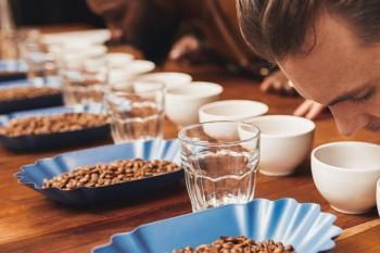 ACARPA promove curso de classificação de café