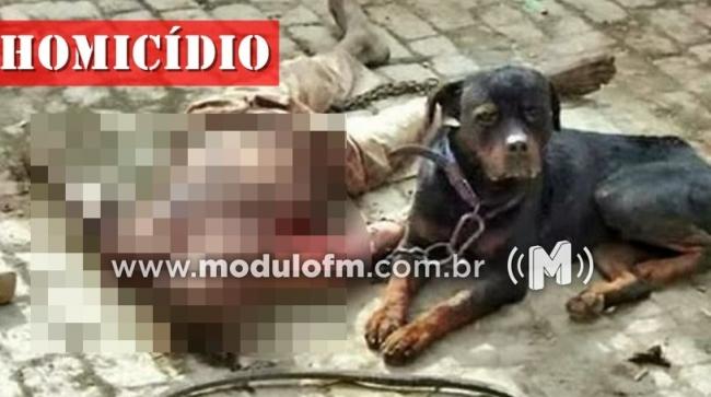 Homem morto a facadas tem partes do corpo dilaceradas por cachorros