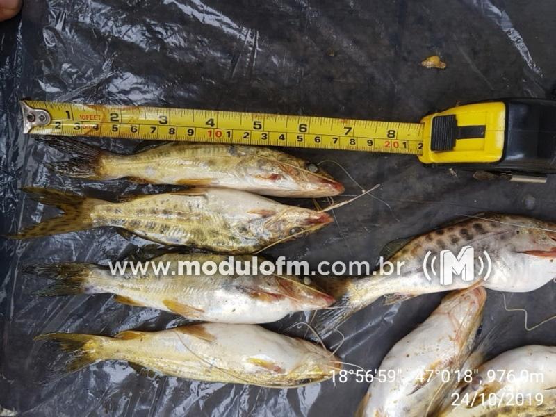 Pescador é preso com peixes fora da medida