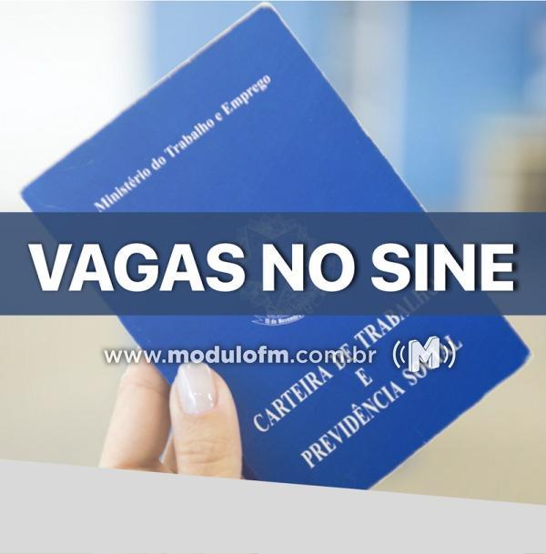SINE divulga vagas de emprego desta quarta-feira (30/10)