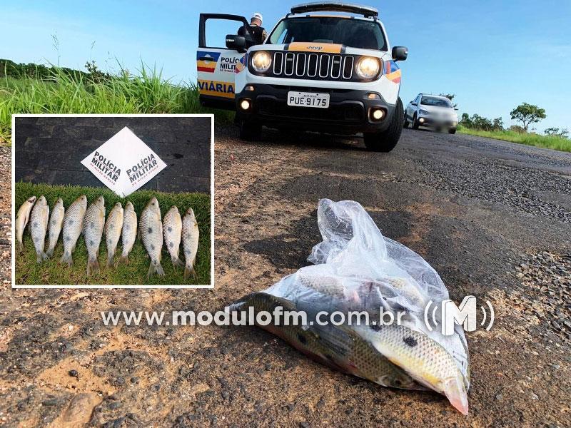 """Antes de pescar procure saber se não está em época de reprodução dos peixes para não ser """"fisgado"""" pela PM"""