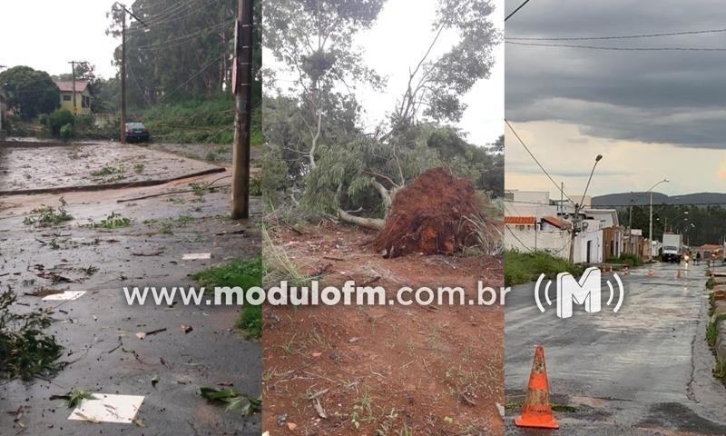 Temporal com ventos fortes derruba árvores, danifica carros e interditada rodovia em Patrocínio