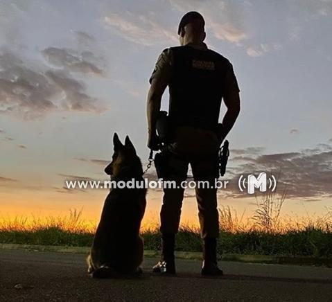 Com ajuda de cães farejadores quatro pessoas são presas suspeitas de tráfico de drogas