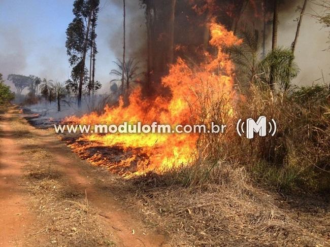 Corpo de Bombeiros aponta redução de queimadas na zona urbana de Patrocínio