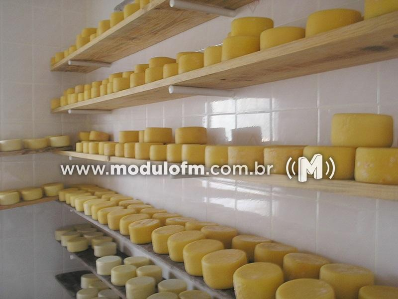 Prorrogado o prazo para certificação do queijo minas artesanal