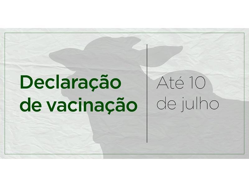 Termina hoje (10) prazo para declarar vacinação contra febre...