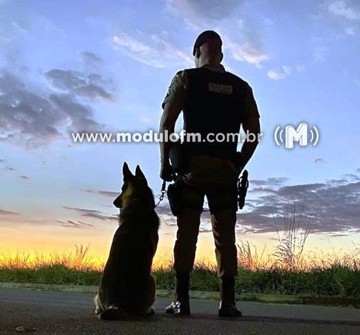 Com o auxílio de cães farejadores, PM encontra droga e prende dois suspeitos