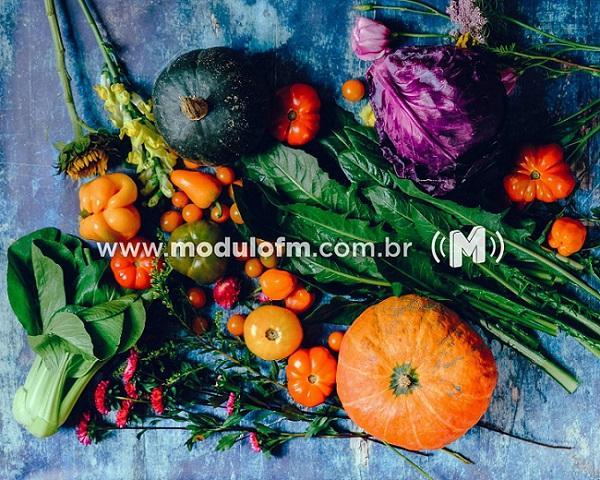 Escola Estadual Joaquim Dias apresenta balanço positivo na entrega dos kits de alimentação