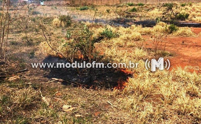 Homem é preso ao colocar fogo em área de pastagem com vegetação