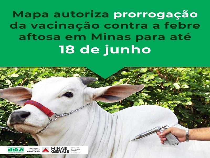 Vacinação contra febre aftosa é prorrogada até 18 de junho em Minas Gerais