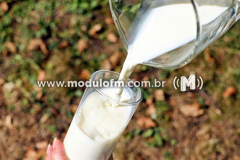 Baixo poder de compra dos consumidores prejudica venda de leite e derivados